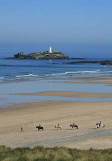 Horses Riding along Gwithian Beach with Godrevy Lighthouse in the background